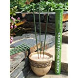 Amazon Lights All-natural Premium Citronella Outdoor Garden Incense Sticks with 2.5-3.0 Hour Burn Time. Brazilian Andiroba Oil Blended with Citronella, Rosemary & Thyme (12-incense sticks per tube) (Color: green)