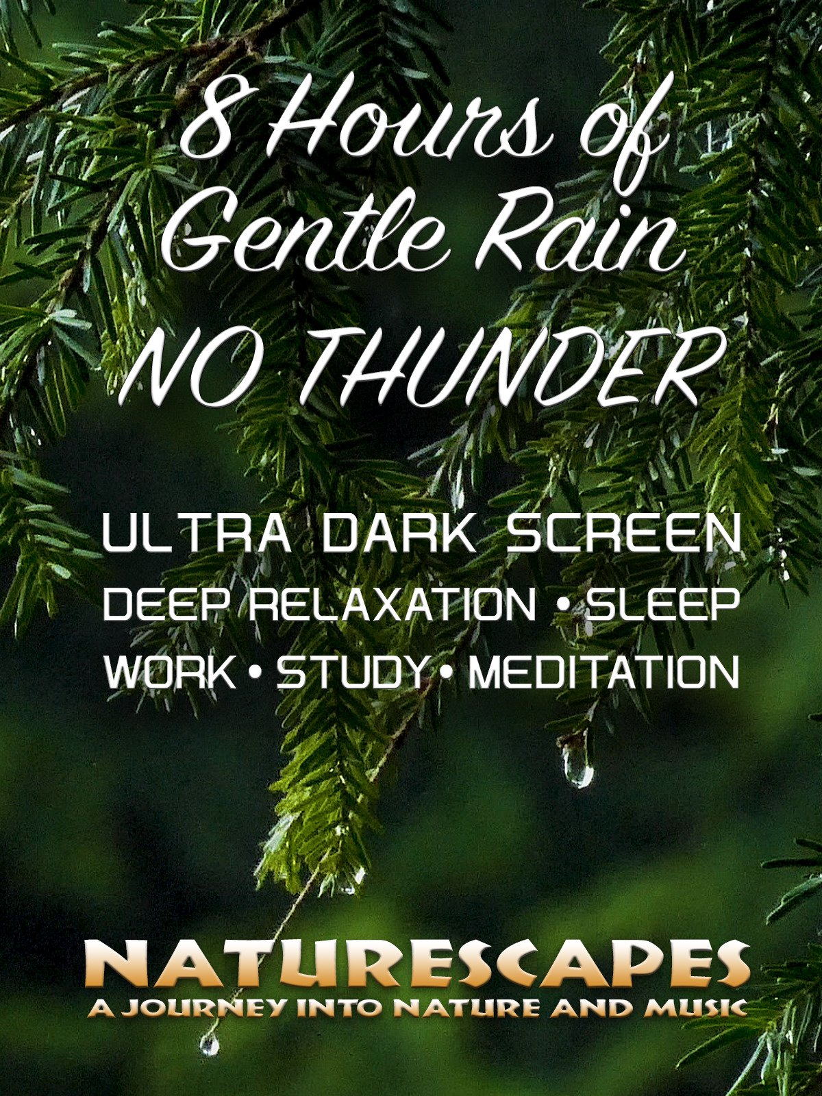 8 Hours of Gentle Rain No Thunder Ultra Dark Screen, Deep Relaxation Sleep Work Study Meditation