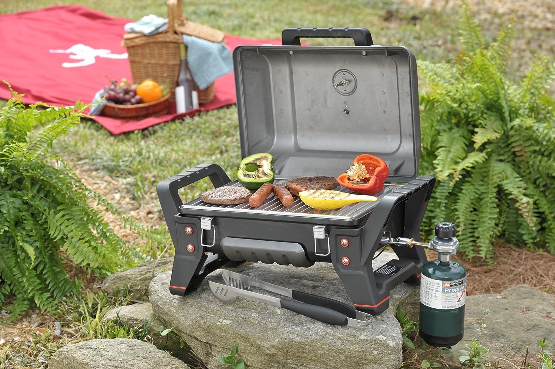 propane grill frustration page 3 forest river forums. Black Bedroom Furniture Sets. Home Design Ideas