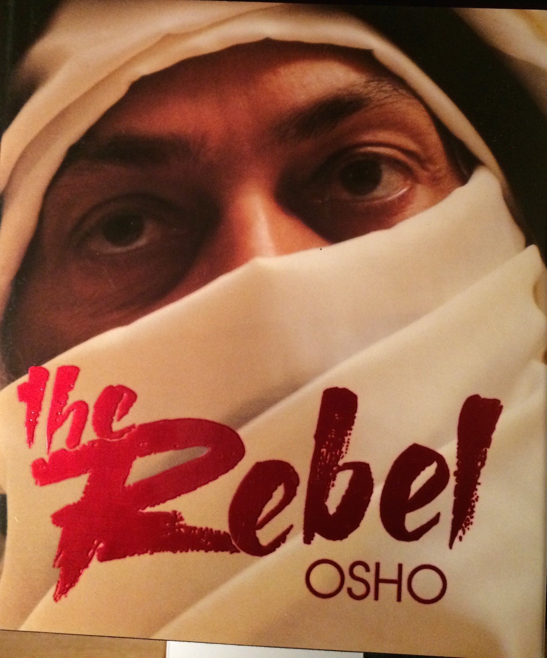 Buy The Rebel, The Book Online At Low Prices In India  The Rebel, The  Reviews & Ratings  Amazon