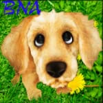 Bna Talk To Your Dog!