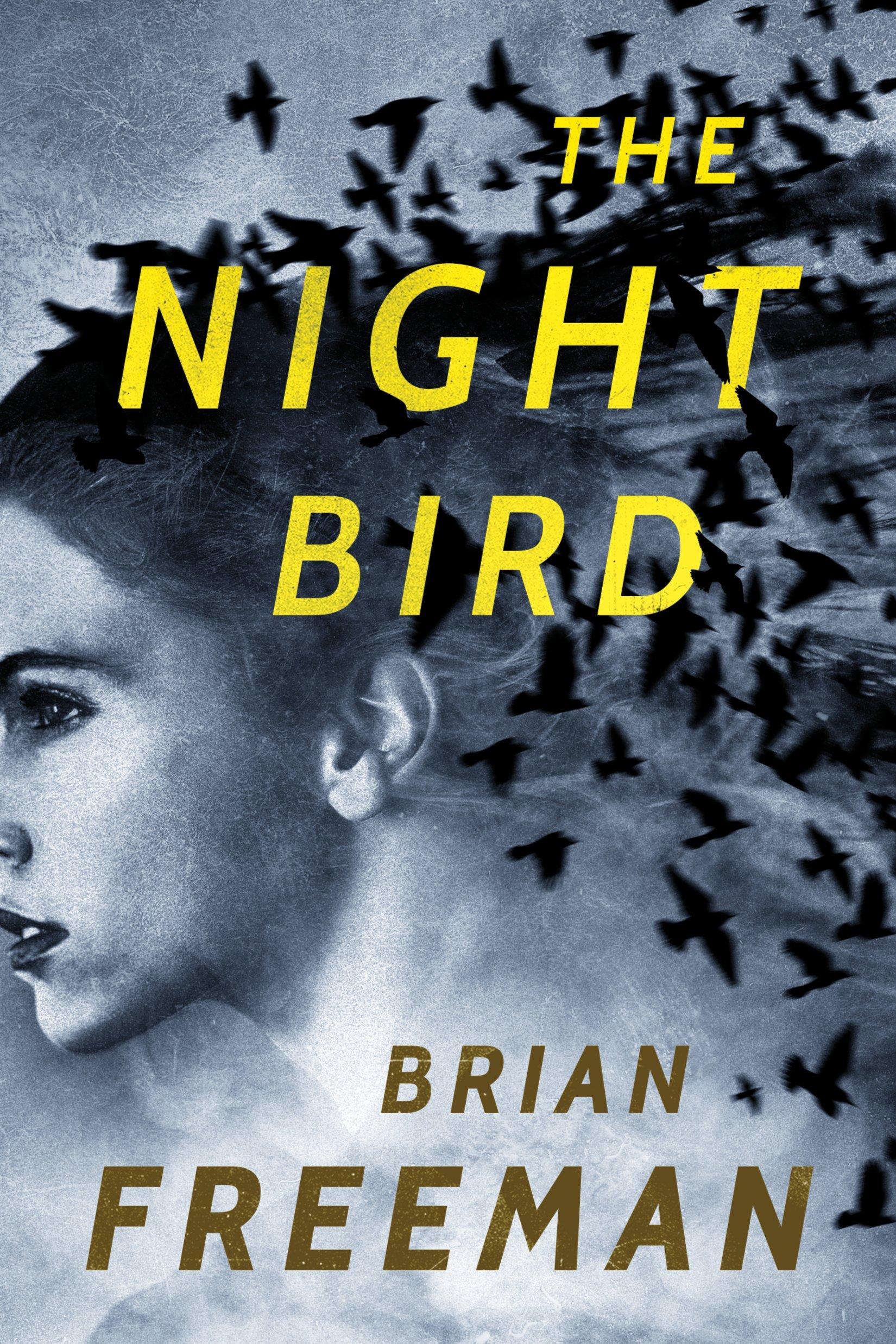 Buy The Night Bird Now!