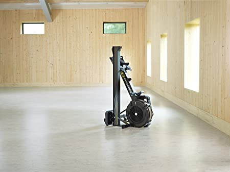 Concept 2 Model D Indoor Reviews