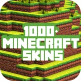 Skins for Minecraft Pocket Edition - PE