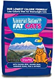 Natural Balance Fat Cats Low Calorie Dry Cat Formula, 15-Pounds