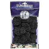 SuperMoss (25123) Reindeer Moss Preserved, Black, 2oz