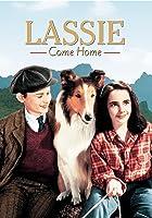 Lassie Come Home [HD]