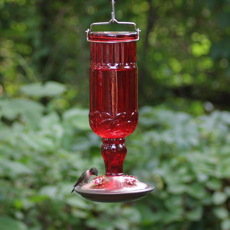 Hummingbird Feeder For 2 Liter Bottle Just B Cause