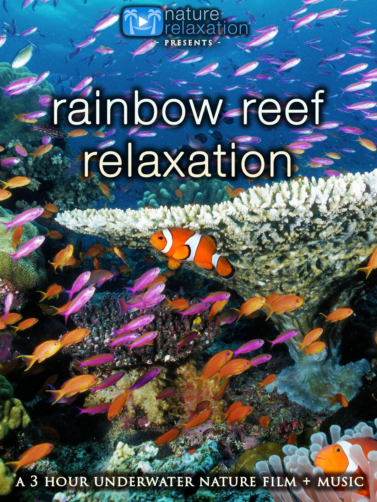 Rainbow Reef Relaxation: 3 Hour Underwater Film with Music