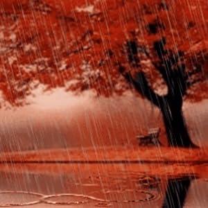 Amazon.com: Rain in Autumn Live Wallpaper: Appstore for ...
