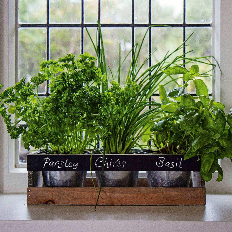 Indoor Herb Garden Kit By Viridescent Wooden