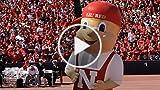 Enjoy a Seattle Huskies Fan Experience in Washington