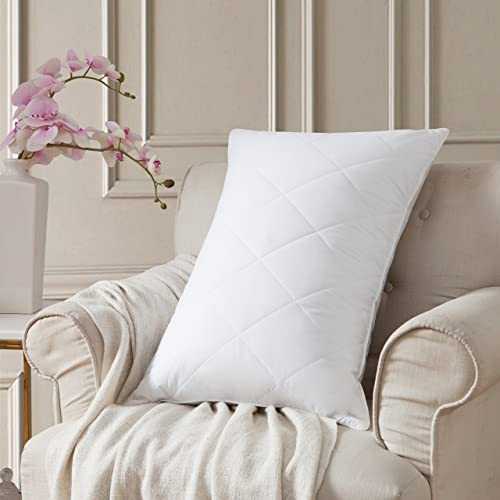 Goose Feather Bed Pillows