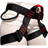Rock Climbing Harness - Safety Body Harness Waist Bag - Tree Climbing, Outdoor Activities, Training - Premium Quality Durable Material - Adjustable Sliding Back D-Ring - Slotted Buckles