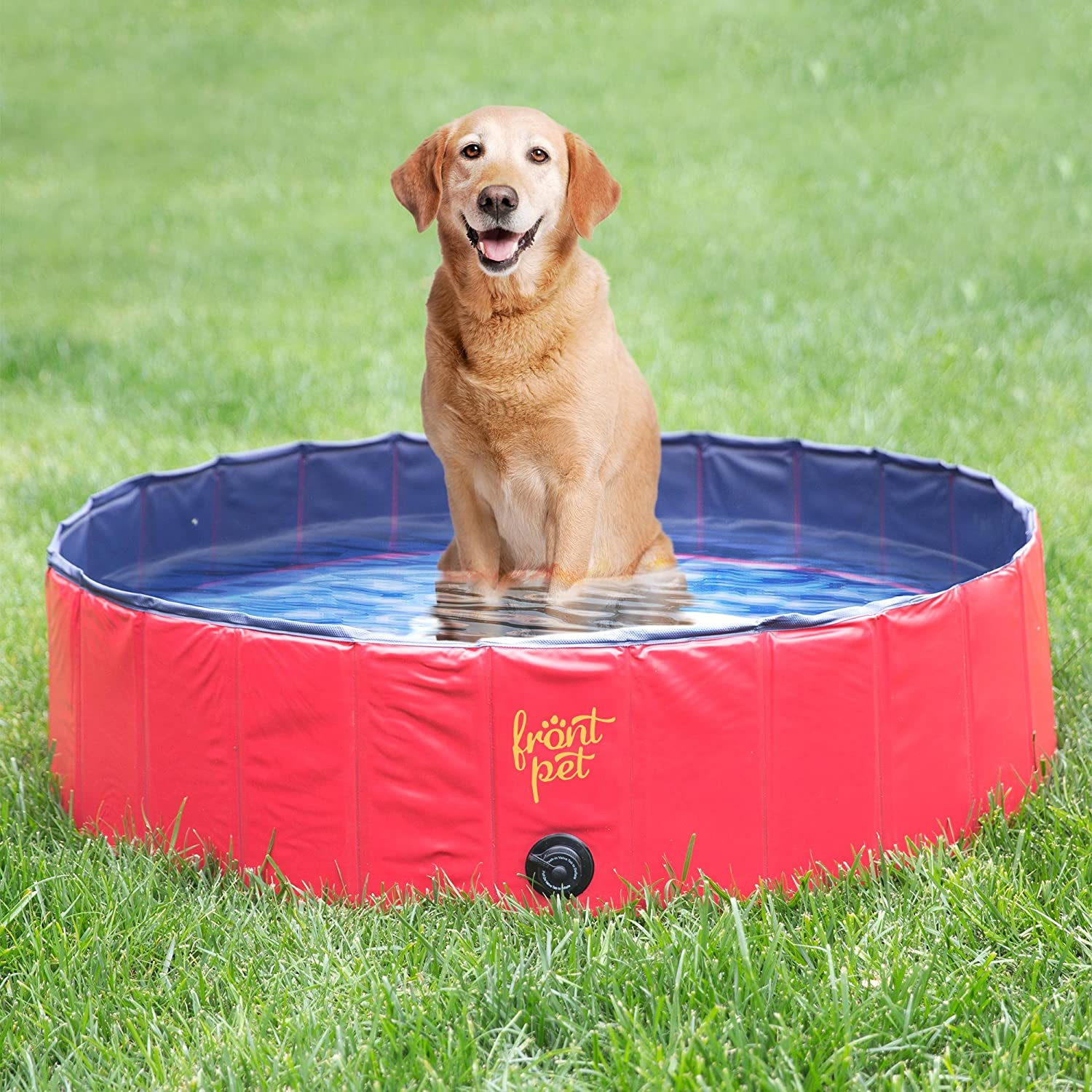 Large pet bath tub pool foldable portable bathing dog for Garden pool for dogs