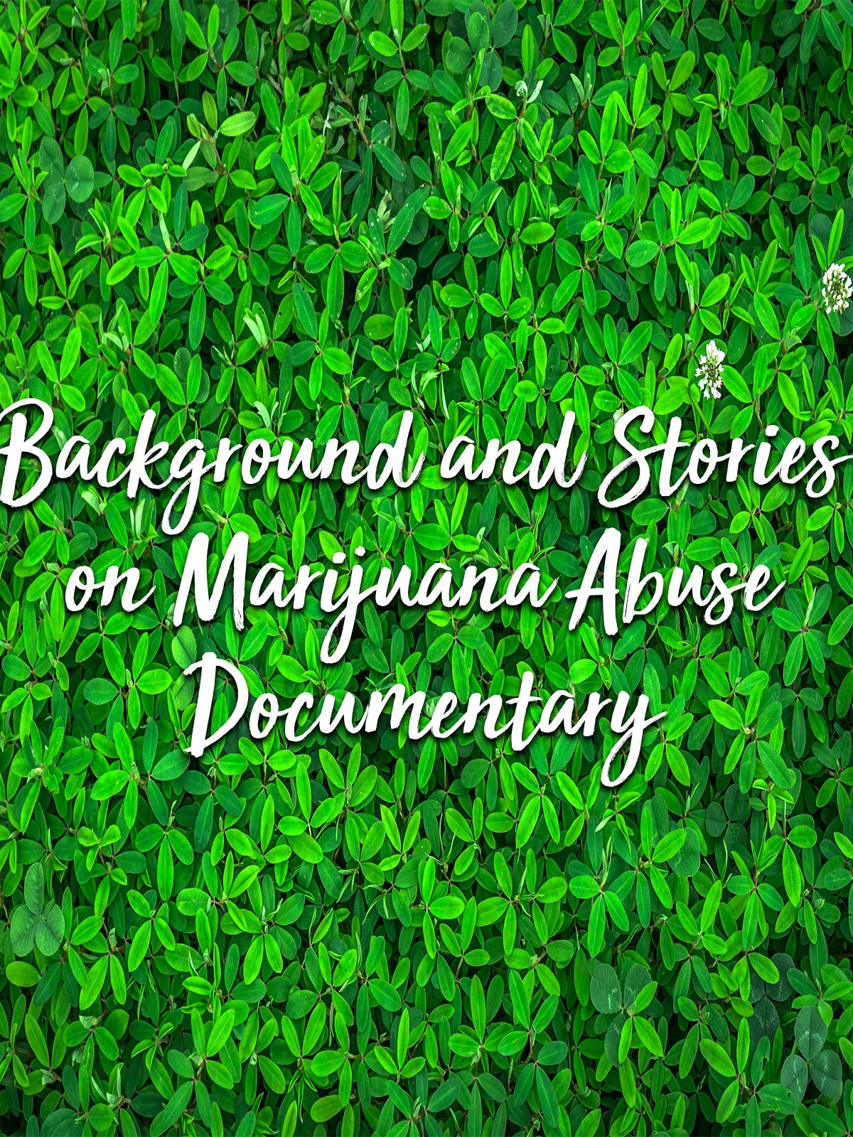 Background and Stories on Marijuana Abuse Documentary