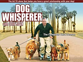 Dog Whisperer Season 3