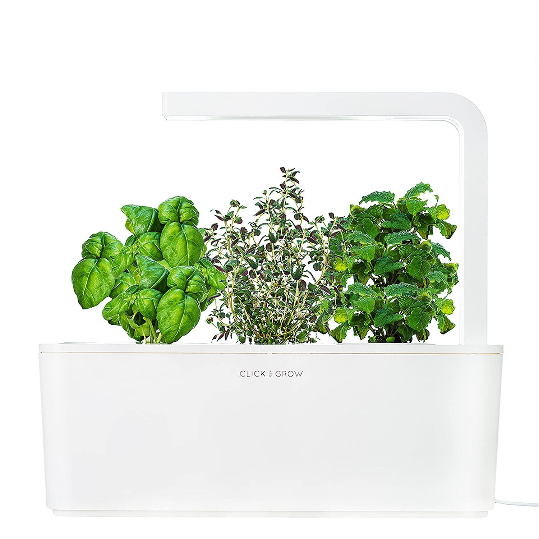 Click & Grow Smart Herb Garden Indoor Grow Kit with Basil, Thyme, and Lemon Balm Cartridges