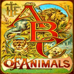 The ABCs of Animals Read-Along Storybook