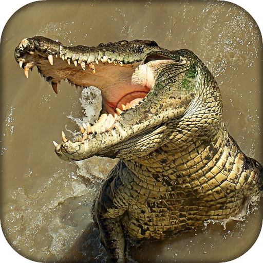Amazon.com: Wildlife Angry Crocodile: Appstore for Android