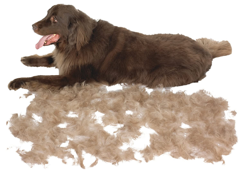 Genuine Furminator Large Dogs Deshedding Tool Dog Grooming