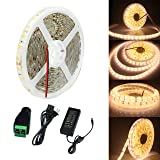 ECOLUX SMD5630 Warm white 16.4Ft 5M 300LEDs LED Strip Light Kit Waterproof IP65 DC12V 60LEDs/m 2 times brightness than 5050 LED Tape Light 5630 LED Ribbon with 6A power supply (Color: Warm white, Tamaño: Warm white)