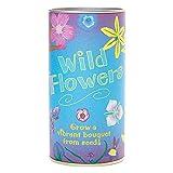 Wildflower Mix | Seed Grow Kit | The Jonsteen Company