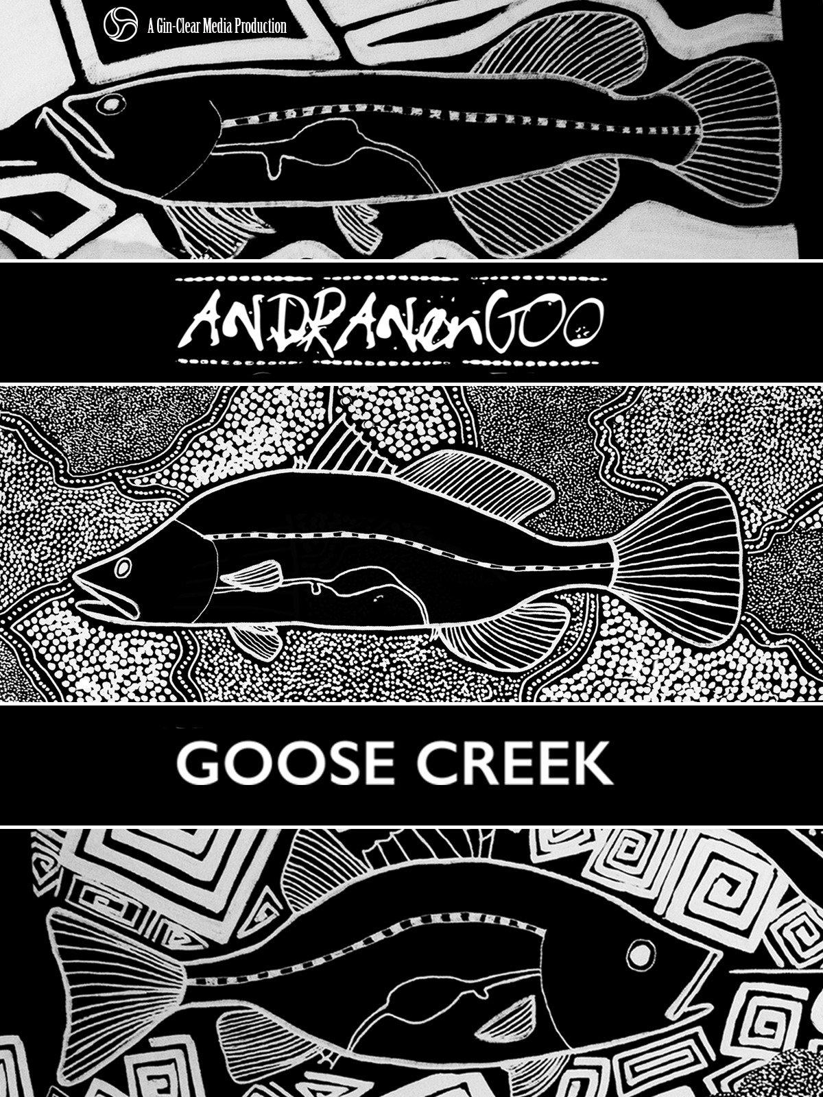 Andranangoo - Goose Creek