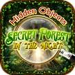 Hidden Objects Secret Forest in the Night