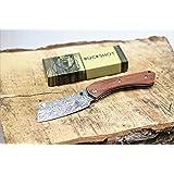 Wartech Buckshot Knives PBK220 Thumb Open Spring Assisted Tanto Cleaver Pocket Knives (PBK222DS) (Color: PBK222DS)