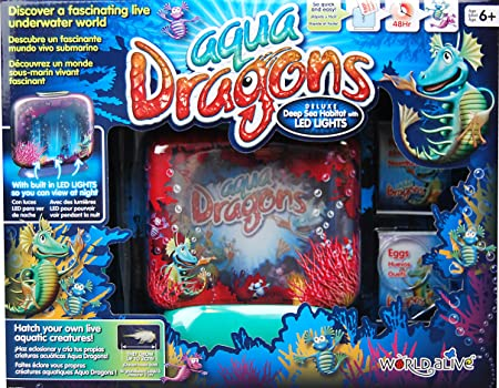 World A Live - 783253 - Aqua Dragons Kit Deluxe avec lumières LED