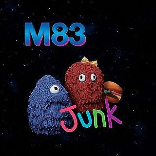 Book Cover: Junk