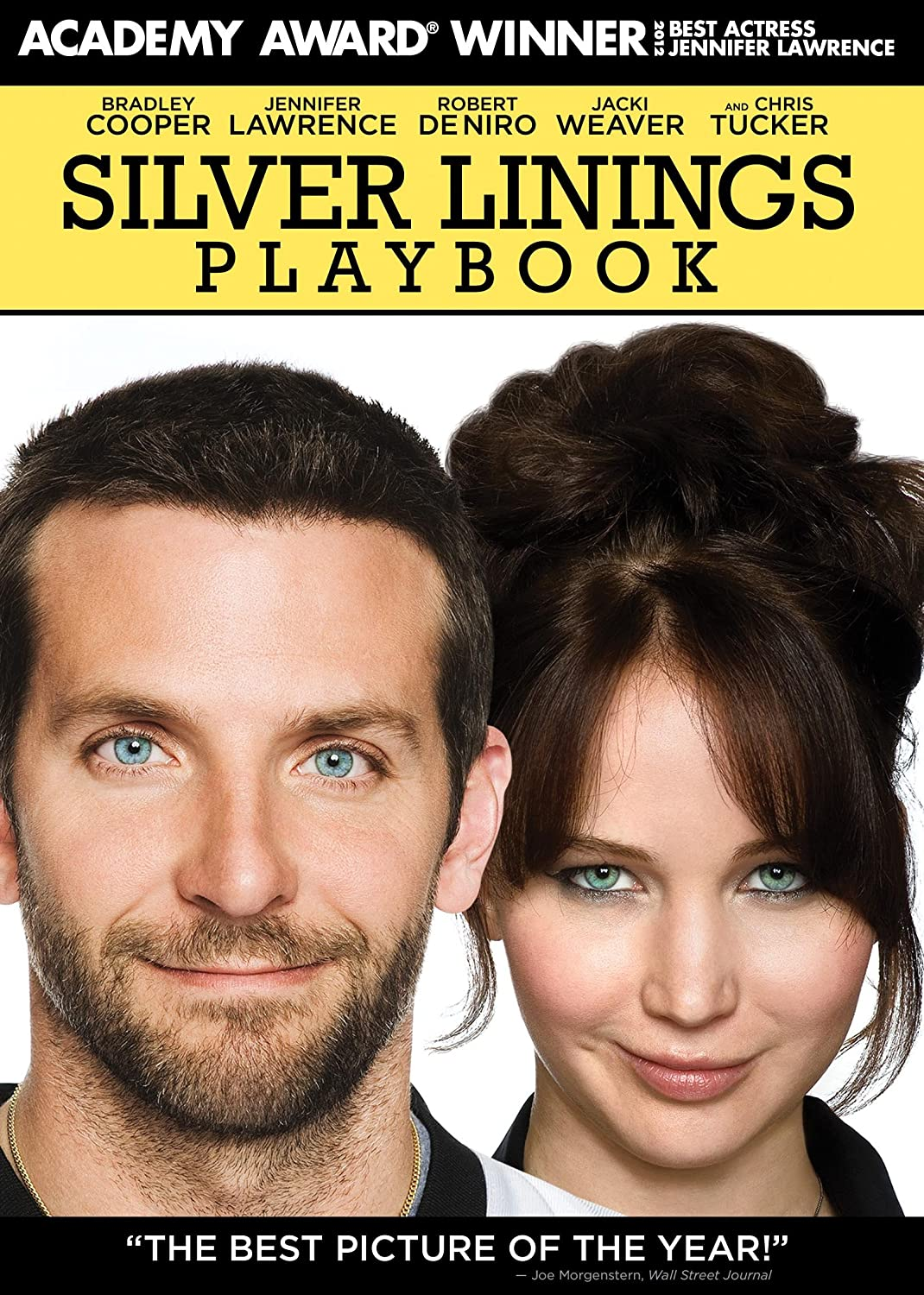 silver linings playbook subtitles english edaw