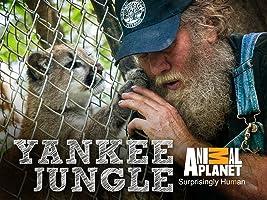 Yankee Jungle Season 1
