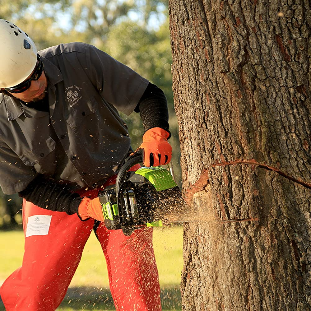 Tips Safety Chainsaw