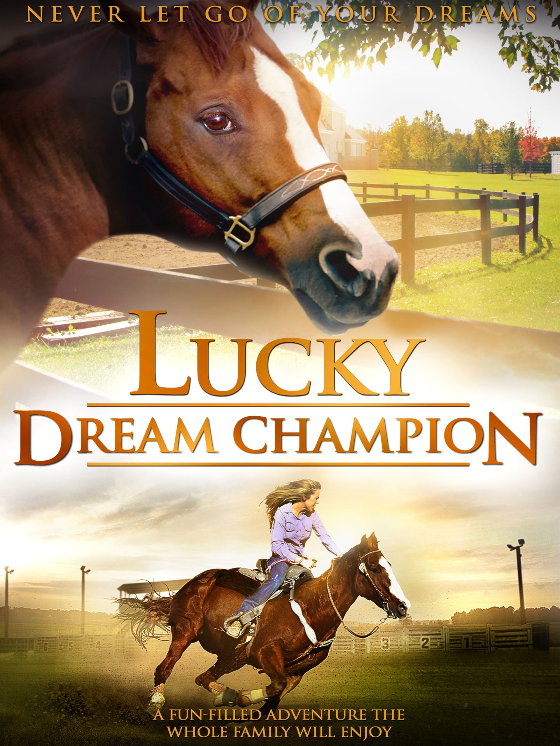 Lucky Dream Champion