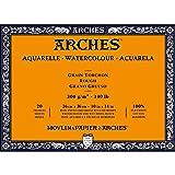 Arches Watercolor Paper Block, Rough, 10