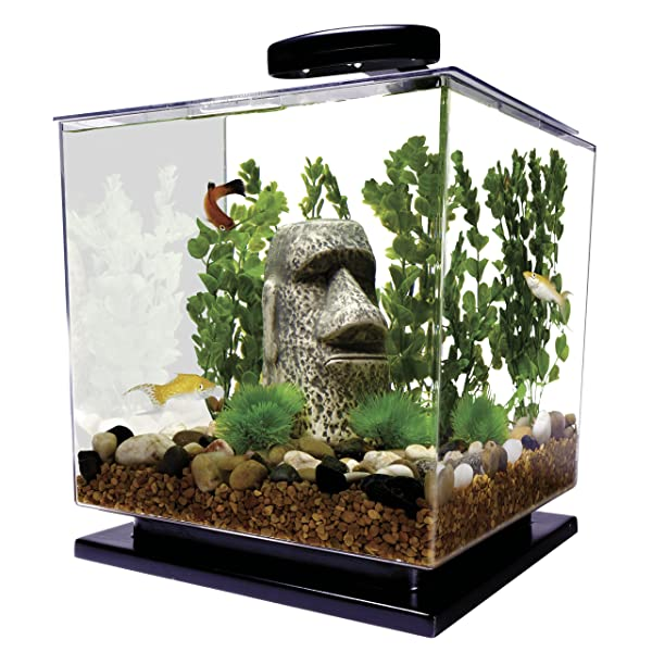 Tetra 3-gallon LED Cube Aquarium Kit Review
