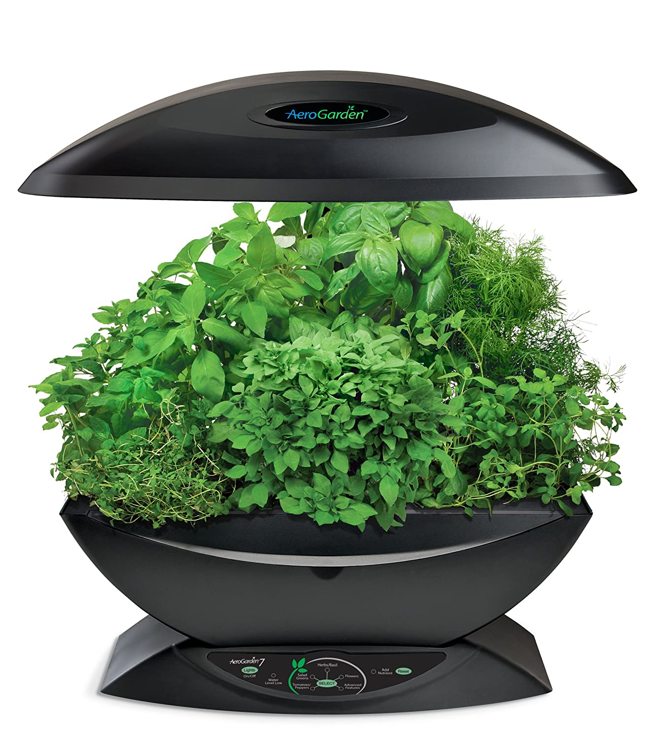 indoor herb garden kit with light