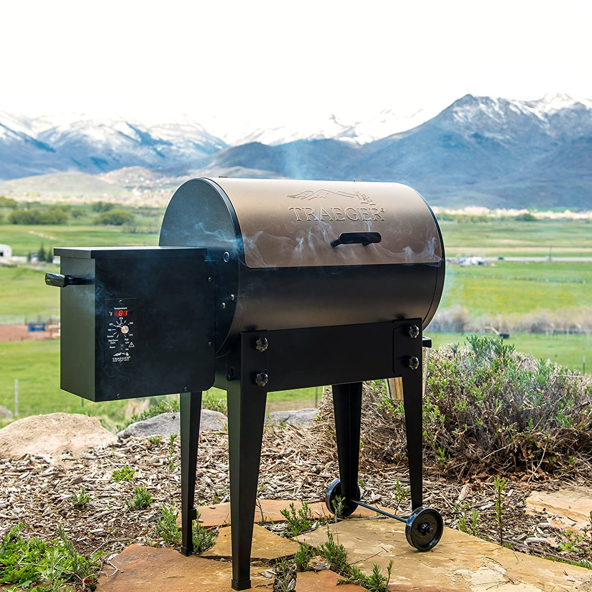 Traeger Grills Junior Elite Wood Pellet Grill and Smoker - Grill, Smoke, Bake, Roast, Braise, and BBQ (Bronze)