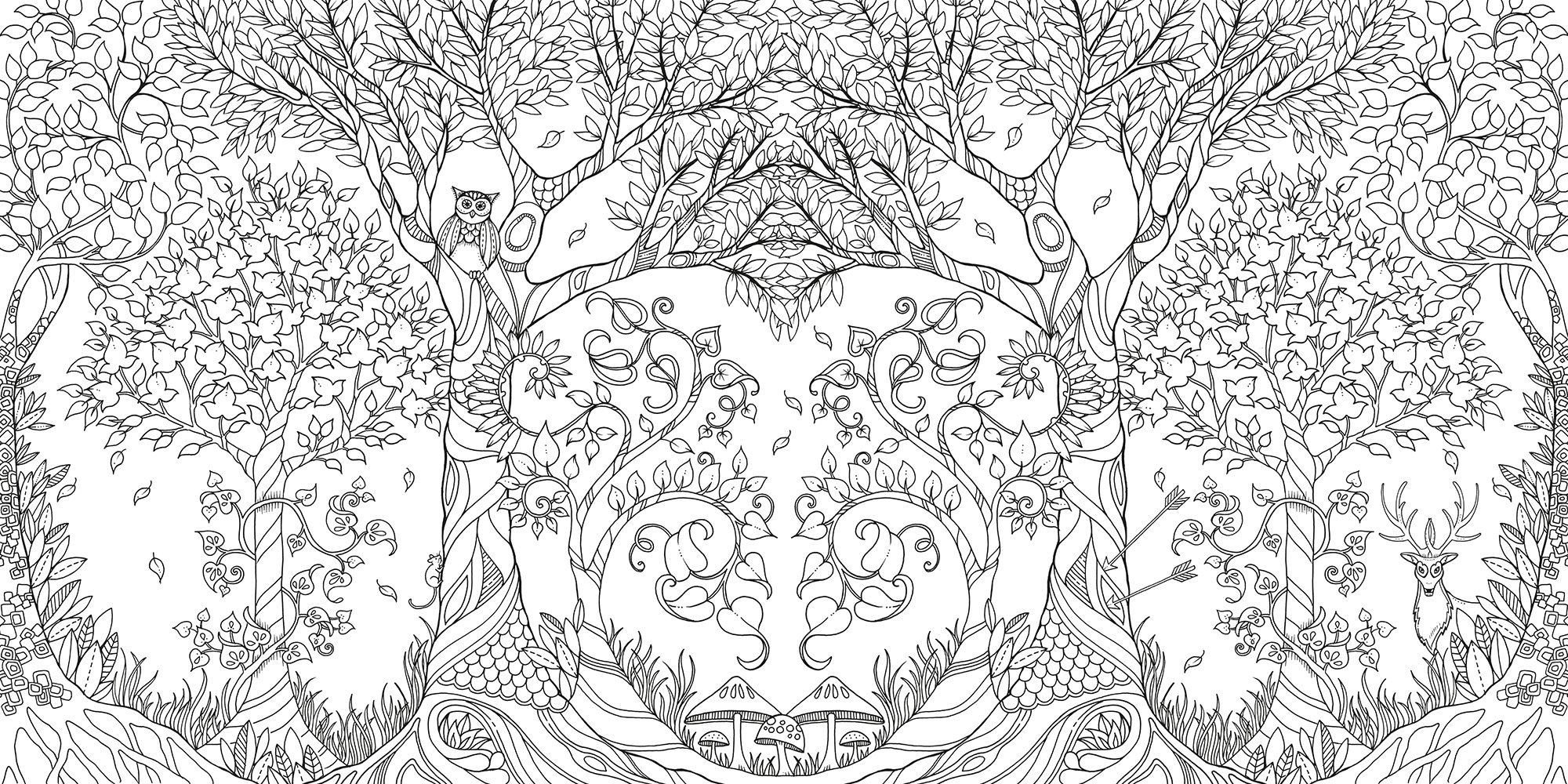 Lets Color! Coloring Books for Grown-Ups