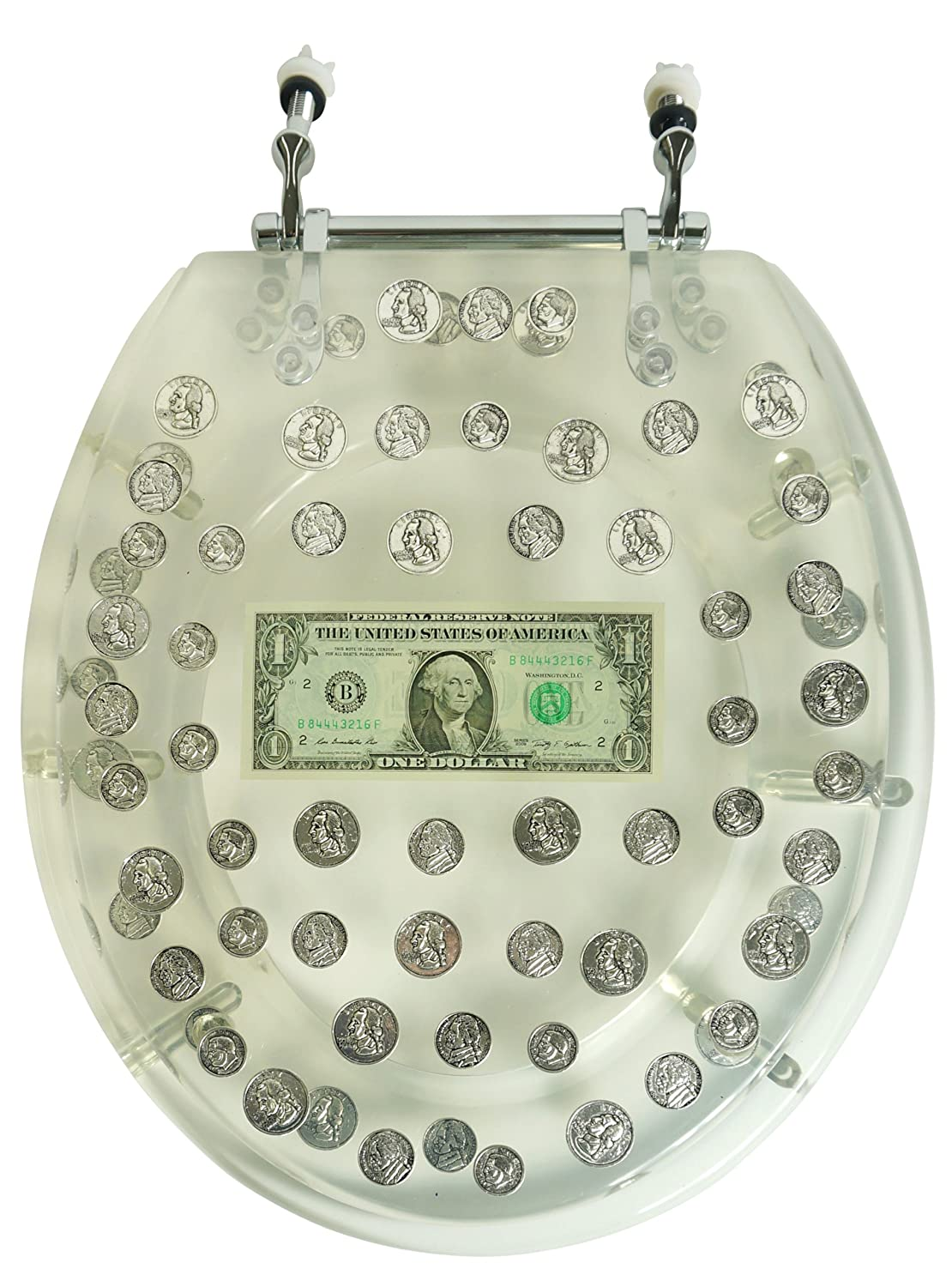 Coin Toilet Seat Filled With Money Fun And Special
