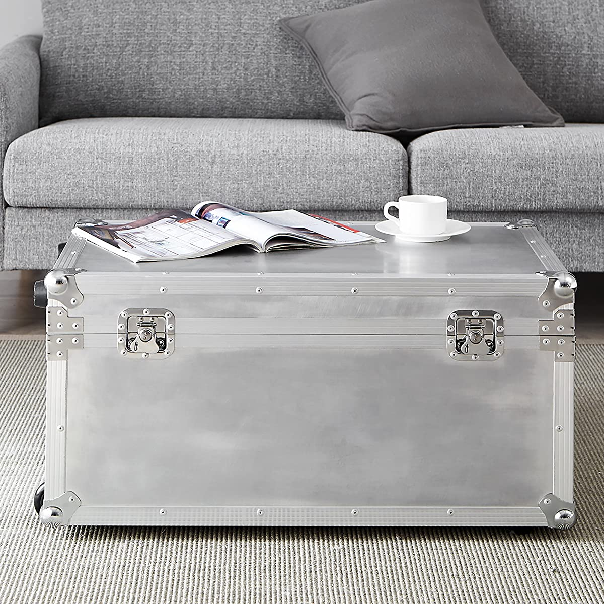 DormCo VIN Steel Plated Trunks - Argent Destination (Silver)