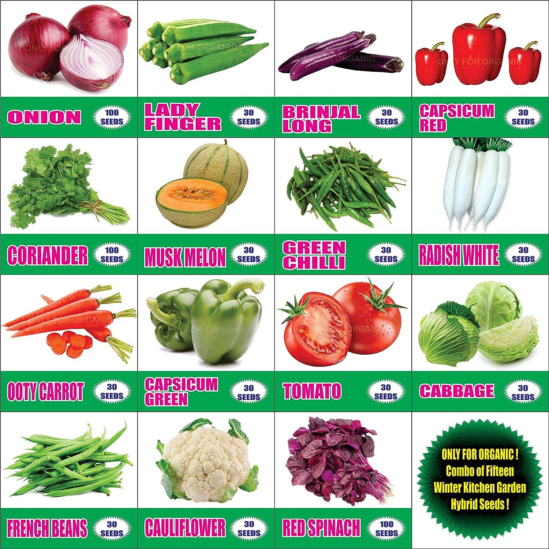 Kitchen Garden Seeds Only For Organic Combo Of Fifteen Winter Kitchen Garden Hybrid