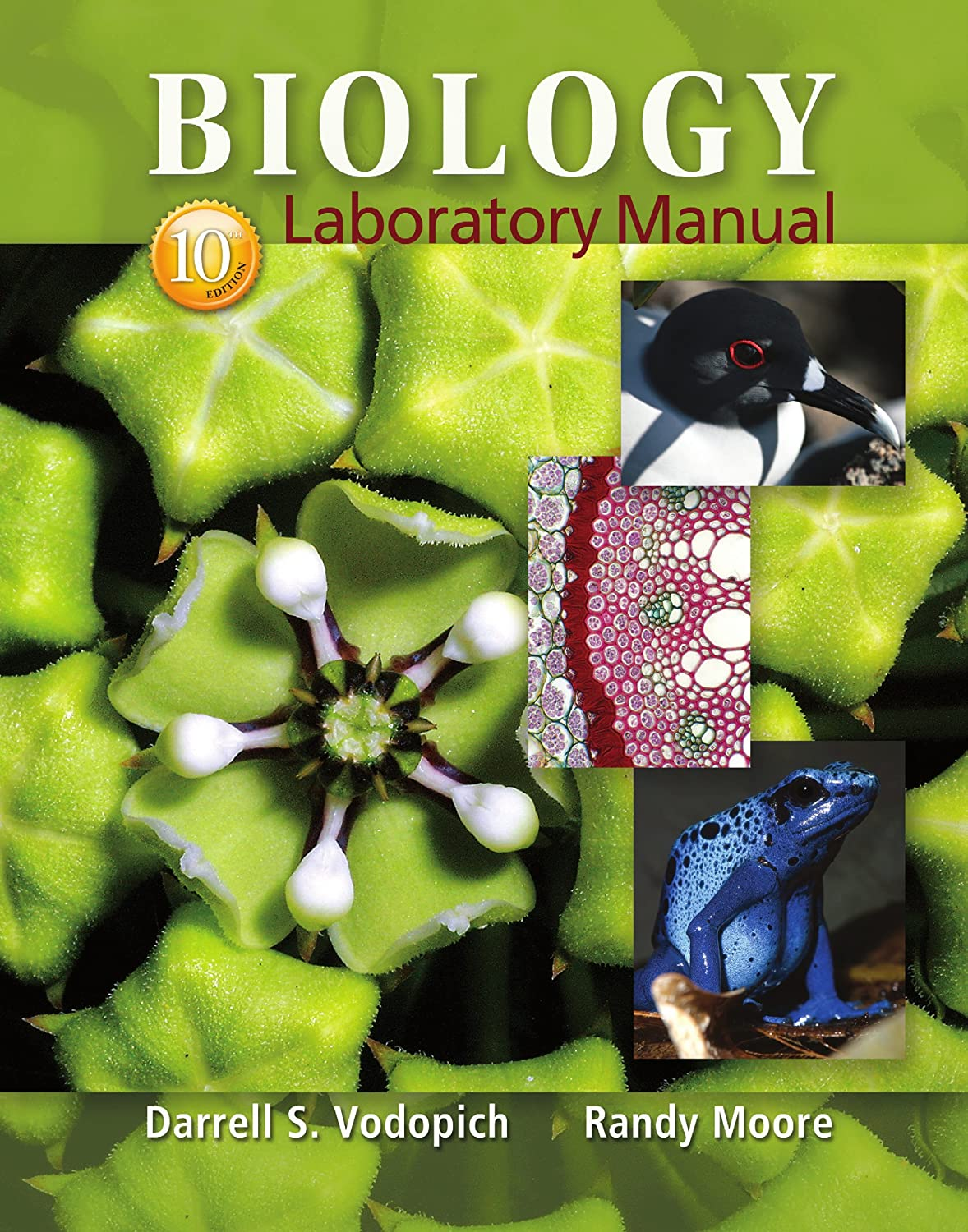 writing papers in the biological sciences 5th edition online book Research and documentation online, 5th edition cse (council of science editors), formerly cbe (council of  book with edition, organization as author, style manual committee,  the council writing papers in the biological sciences (5th ed) boston, ma: bedford/st pdf format is not acceptable for the source file of the text of the.