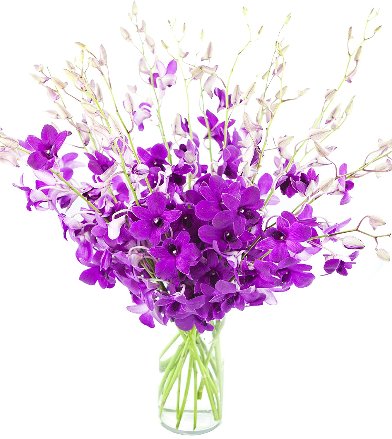 Ultimate Purple Dendrobium Orchid Bouquet (20 stems) - The KaBloom Collection Flowers With Vase