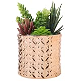5-Inch Ceramic Canister Planter with Metallic Copper-Tone Finish and Diamond Debossed Texture (Color: Copper, Tamaño: S)