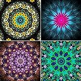 UPINS 4 Pack 5D DIY Diamond Painting Set,Flower Painting(30X30CM/12X12inch)