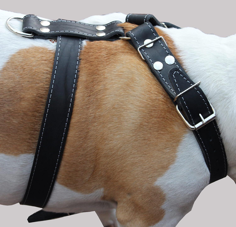 Black Genuine Leather Dog Harness Large