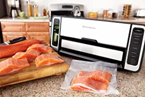 FoodSaver FSFSSL5860 Review